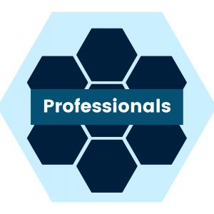 Hexagon pattern - Professionals