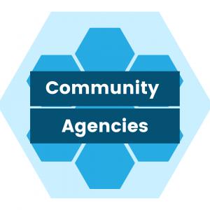 hexagon pattern - community agencies